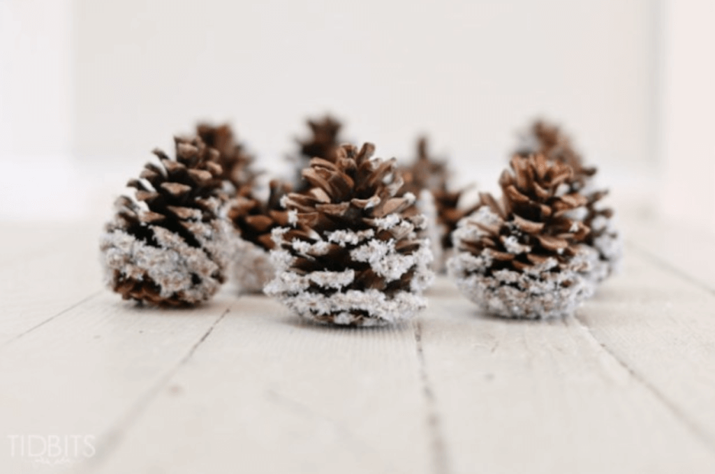 Christmas Pine Cone Crafts- Snow Covered Pine Cones